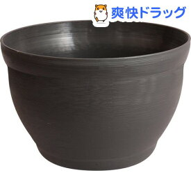 メダカの小鉢 しこく(1コ入)