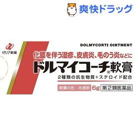 【第(2)類医薬品】ドルマイコーチ軟膏(6g)