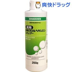 薬用酢酸クロルヘキシジンシャンプー(250g)【フジタ製薬】