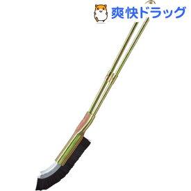 スミまでキレイJ型ブラシ(1本)