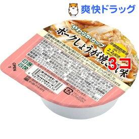 キッセイ やわらかカップ ポークしょうが焼き風味(60g*3コセット)【キッセイ】