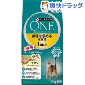 ピュリナ ワン キャット 美味を求める成猫用 1歳以上 チキン(2.2kg)【dalc_purinaone】【ピュリナワン(PURINA ONE)】[キャットフード]