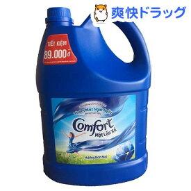 ベトナムコンフォート ワンタイムサンライズ(3.8L)【コンフォート(Comfort)】