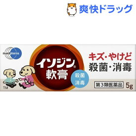 【第3類医薬品】イソジン軟膏(5g)【イソジン】