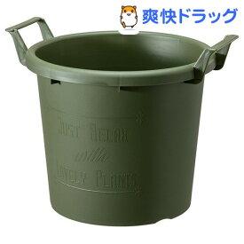 グロウコンテナ 40型 グリーン(1コ入)【大和プラスチック】