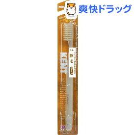 ケント(KENT) 豚毛 歯ブラシ 超かため(1本入)【ケント】
