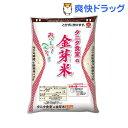 令和元年産 タニタ食堂の金芽米(BG無洗米)(2.7kg)