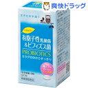 【訳あり】ミネルヴァ 乳酸菌&ビフィズス菌(180粒)【ミネルヴァ】【送料無料】