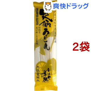 足柄うどん 中太麺(240g*2袋セット)