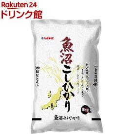 令和元年産 魚沼産コシヒカリ(5kg)【パールライス】[米]