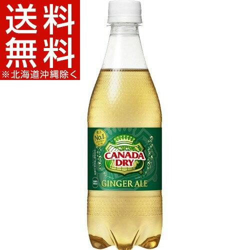 カナダドライ ジンジャーエール(500mL*24本入)【カナダドライ】[炭酸飲料 コカ・コーラ]【送料無料(北海道、沖縄を除く)】