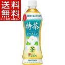 特茶ジャスミン(500mL*24本入)【サントリー】【送料無料(北海道、沖縄を除く)】