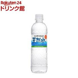 大分久住山系 天然水 ミネラルウォーター シリカ水(500ml*24本入)【九州の天然水】