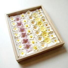 和三盆花落雁 偲ぶ花 桐箱詰め合わせセットひなそう、黄菊、白山吹、水仙、桔梗、白菊