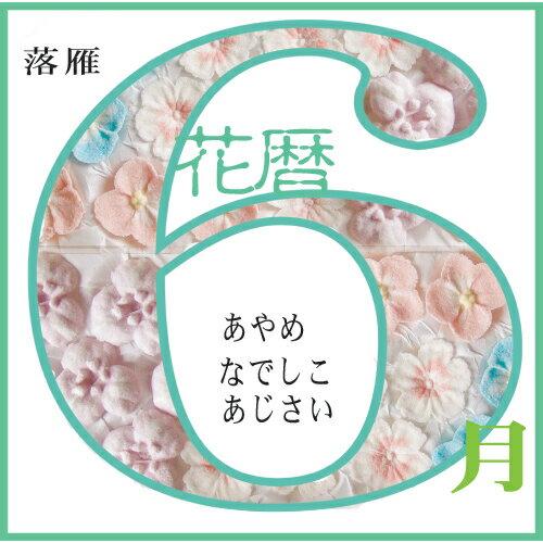 落雁 6月の花 あやめ なでしこ あじさい【和菓子】【干菓子】【和三盆】【贈り物】
