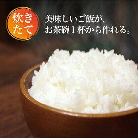 【予約販売9月中旬発送予定】マルチ炊飯器