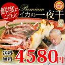 プレミアムサイズ!!イカの一夜干し3枚。晩酌のおつまみに日本海で水揚げされた国産いかの珍味。海産物を贈り物(プレゼント)に海の幸…