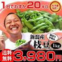 遅れてごめんね 敬老の日 ギフト 【あす楽】黒崎 茶豆!朝採り手摘み枝豆1kgで3,980円。新潟から産地直送!時期によってえだまめの品種…