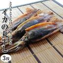 【イカの丸干し】日本海で水揚げされた国産いかの丸干し。海産物を贈り物(プレゼント)にお考えなら無添加の海の幸!【福袋】海鮮、魚…