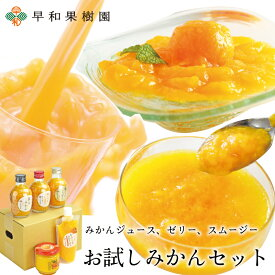 早和果樹園 お試しみかんセット(R) みかん ジュース ゼリー スムージー 飲むみかん