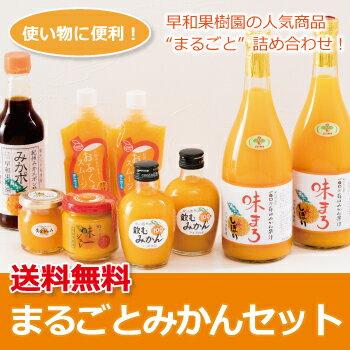 早和果樹園 まるごとみかんセット【送料無料】【みかんジュース】