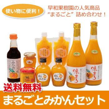 【N】 まるごとみかんセット【送料無料】【みかんジュース】