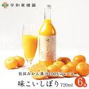 みかんジュース 高級 無添加 味こいしぼり 720ml×6本W 100% みかんジュース 早和果樹園