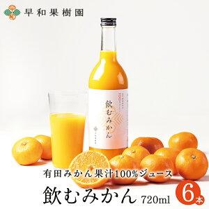 みかんジュース ストレート 飲むみかん 720ml×6本W 和歌山 果汁100% ジュース 有田 温州みかん 無添加 早和果樹園 ピーチ