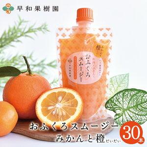 飲むゼリー おふくろスムージーみかんと橙 170g×30本入 送料無料 スムージー 有田みかん 橙 だいだい ゼリー シャーベットにも 和歌山 早和果樹園