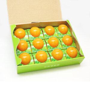 早和果樹園 飲むみかんのジュレ12個ギフト ゼリー みかん みかんゼリー ジュレ フルーツゼリー お土産 手土産 内祝