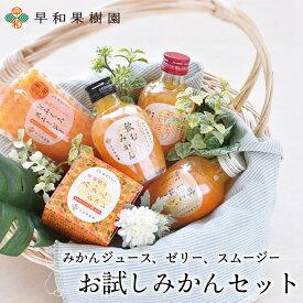 お試しみかんセット 有田みかん ジュース ゼリー スムージー 飲むみかん 初めての方に 送料無料 早和果樹園