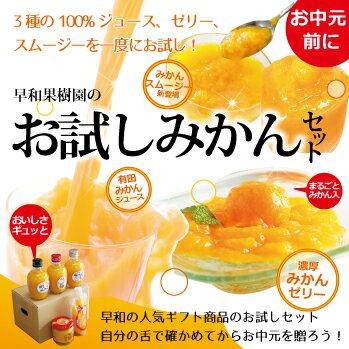 早和果樹園 お試しみかんセット【 みかん ジュース ゼリー スムージー 飲むみかん 】