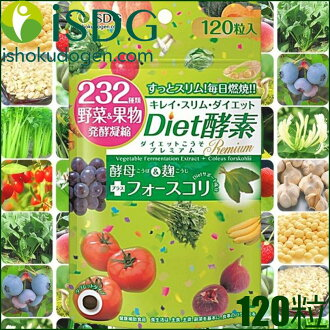 "Medical food source of the dot-com 232 diet enzyme premium 120 grains per 30 day-«complex plant fermentation products containing food» ""4562355171034"""