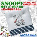 【Snoopy】シングルクッション 『フライングスヌーピー』 (約45×45cm)グレー
