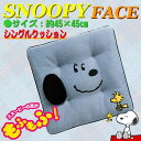 【Snoopy】シングルクッション 『スヌーピーフェイス』 (約45×45cm)ブルー