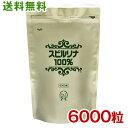 スピルリナ100% 6000粒 約5ヵ月分 送料無料ホールフード マルチビタミン マルチミネラル アミノ酸 ファスティング ダ…