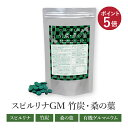 炭 スピルリナGM竹炭・桑の葉 3600粒 約90日分有機ゲルマニウム 竹炭 桑の葉 炭ダイエット ホールフード ファスティング ダイエット タンパク質がたっぷり 【ラッキーシール対応】