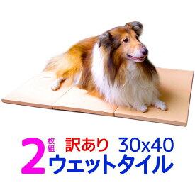 訳あり割引 2枚組 クールワン ウェットタイル 30×40cm 2枚組 1.6cm厚 脚付 冷却マット 犬・猫OK 屋外でも冷たい ペットの夏用ベッド ひんやりグッズ マット 暑さ対策 犬用品 冷たい ひんやり クールマット 犬 夏対策