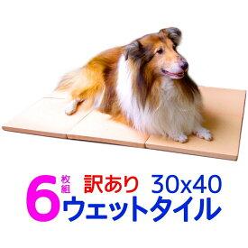 訳あり割引 6枚組 クールワン ウェットタイル 30×40cm A6枚組 1.6cm厚 脚付 冷却マット 全犬種・猫OK ひんやりグッズ マット 暑さ対策 犬 冷たい ひんやりクール マット 犬用品 夏対策 屋外でも冷たい ペットの夏用ベッド