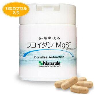 Valley, Oishi, Hattori fucoidan MgS + (180 capsules)