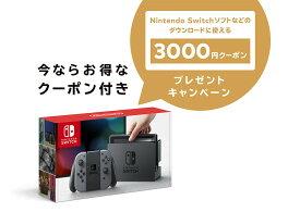 3000円キャンペーンクーポン付【即納★新品】NSW Nintendo Switch Joy-Con(L)/(R) グレー