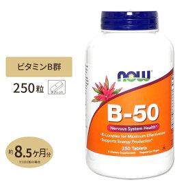ビタミンB-50 タブレット 250粒 NOW Foods(ナウフーズ)【ポイントUP対象★9/29 17:00〜10/13 9:59迄】