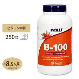 ビタミンB-100 250粒《約8ヵ月分》 NOW Foods(ナウフーズ)葉酸 400mcg ビタミンB群【ポイントUP対象★9/29 17:00〜10/13 9:59迄】