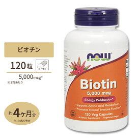 【送料無料】ビオチン 5000mcg120粒《120日分》NOW Foods(ナウフーズ)/カプセル/ビタミン/ビタミンB群/スキンケア/ヘアケア/肌/髪/栄養補助/サプリメント/サプリ