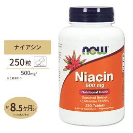 ナイアシン 500mg 250粒 NOW Foods(ナウフーズ)