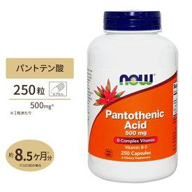 パントテン酸(ビタミンB5) 500mg 250粒《約8ヵ月分》 NOW Foods(ナウフーズ)美容/健康/サプリ/サプリメント/高含有/ビタミン/