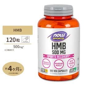 HMB 500mg 120粒《約3ヵ月分》 NOW Foods(ナウフーズ)トレーニング アメリカ製 高含有 BCAA バリン ロイシン イソロイシン スポーツ ダイエット アミノ酸 シトルリン サプリ