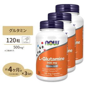 [3個セット]L-グルタミン 500mg 120粒 NOW Foods(ナウフーズ)【ポイントUP対象★14日17:00〜29日9:59迄】