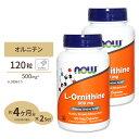 2個セット L-オルニチン 500mg 120粒 NOW Foods(ナウフーズ)