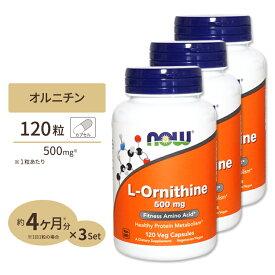 [3個セット]L-オルニチン 500mg 120粒 NOW Foods(ナウフーズ)